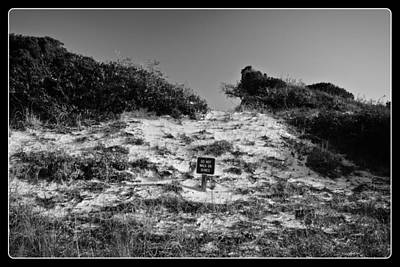Photograph - Do Not Disturb The Dunes by George Taylor