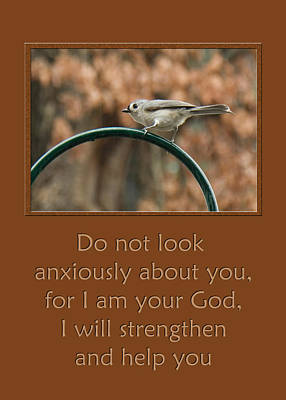 Do Not Look Anxiously About You Art Print by Denise Beverly