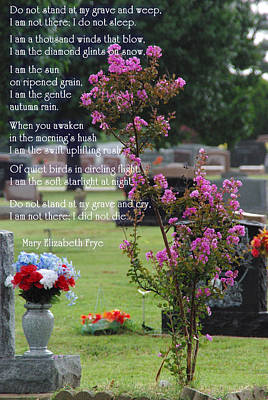 Photograph - Do Not Stand At My Grave Sympathy by Robyn Stacey