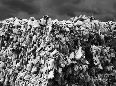 Oil Photograph - Do You Need A Bag by Barbara McMahon