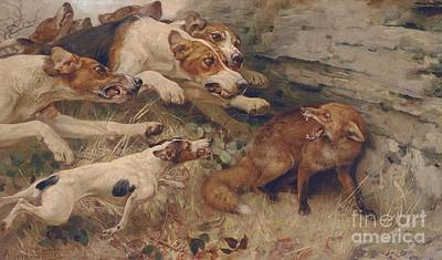 Fox Hunting Painting - Do Your Worst by Alfred William Strutt