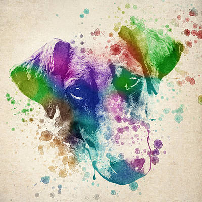 Vibrant Color Digital Art - Doberman Splash by Aged Pixel