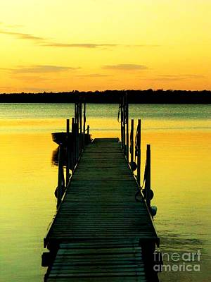 Photograph - Dock At Dawn by Desiree Paquette