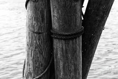 Photograph - Dock Pilings Mono by John Rizzuto