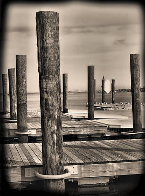 Dock Posts On The Potomac Art Print by Steven Ainsworth