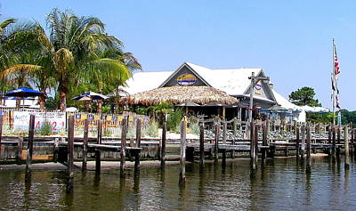 Photograph - Docking At Paradise Grill by Pamela Hyde Wilson