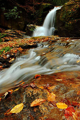 Photograph - Dodd Creek Falls IIi by Daniel Woodrum