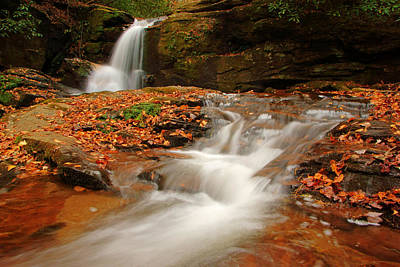 Photograph - Dodd Creek Falls V by Daniel Woodrum