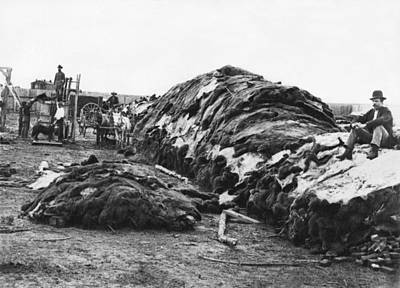 1878 Photograph - Dodge City Buffalo Hides by Underwood Archives