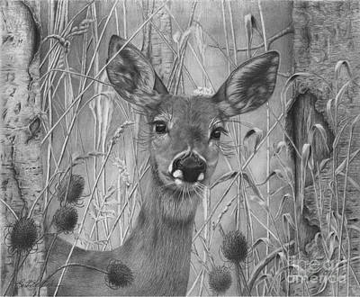 Doe Pretty Art Print
