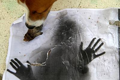 Dog Art Art Print
