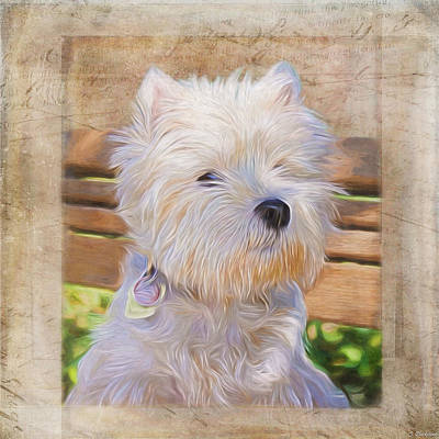 Painting - Dog Art - Just One Look by Jordan Blackstone