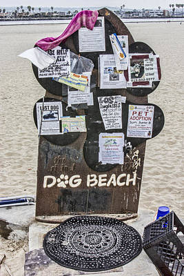 Digital Art - Dog Beach  by Photographic Art by Russel Ray Photos