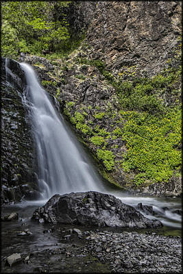 Photograph - Dog Creek Falls by Erika Fawcett