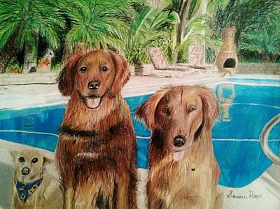 Colored Pencil Drawing - Dog Drawing by Savanna Paine