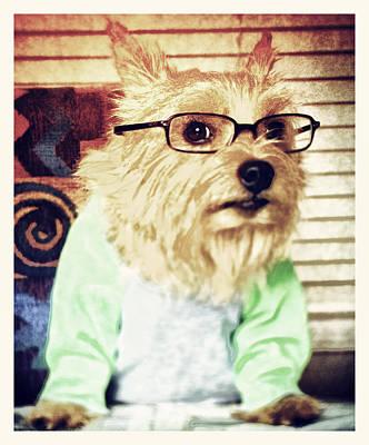 Terrier Digital Art - Dog Gone Cute by Susan Stone