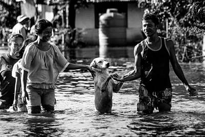 Dog Helper Original
