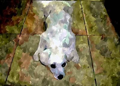 Dog Lying On Floor  Art Print by Lanjee Chee
