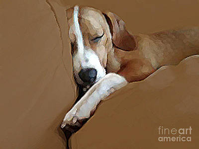 Muzzle Digital Art - Dog - Mr. Oliver Snoozing by Maureen Tillman