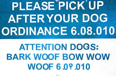 Photograph - Dog Ordinance by Jeff Gater