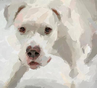 House Pet Digital Art - Dog Question by Yury Malkov