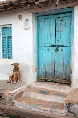 Stoop Photograph - Dog Resting Outside A House, Jojawar by Inger Hogstrom