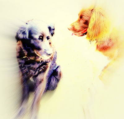 If You Are Dreaming Of A Dog Romance Dream Again  Art Print by Hilde Widerberg