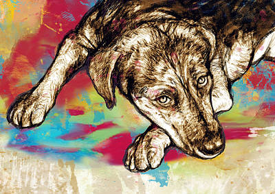 Dog Abstracts Mixed Media - Dog Stylized Pop Modern Art Drawing Sketch Portrait by Kim Wang