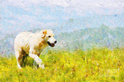 Dog Walking By Grass Painting Print by Magomed Magomedagaev