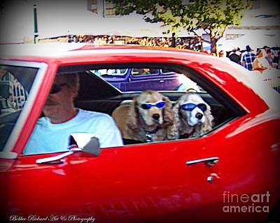Photograph - Doggies In The Window by Bobbee Rickard