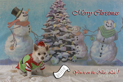 Photograph - Doggy Elf Nice List by Photography by Laura Lee