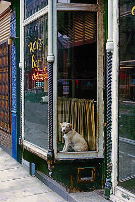 Doggy In The Window Version - 4 Art Print
