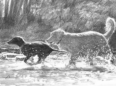 Drawing - Dogs In A Stream Pencil Portrait by Mike Theuer