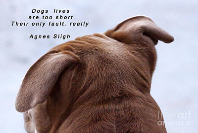 Dogs Lives Are Too Short Art Print by Janice Rae Pariza