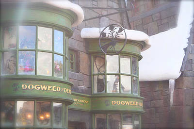 Dogweed Dream Art Print