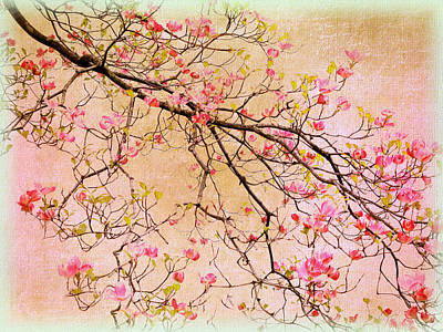 Dogwood  Canvas Art Print by Jessica Jenney