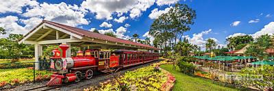 Dole Plantation Train 3 To 1 Aspect Ratio Art Print by Aloha Art