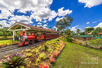 Dole Plantation Train Art Print