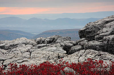 Monongahela National Forest Photograph - Dolly Sods Wilderness D30007778 by Kevin Funk