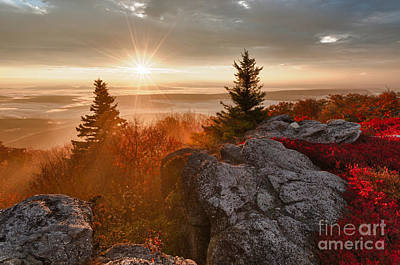Dolly Sods Wilderness D30018415 Print by Kevin Funk