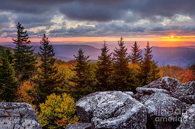 Dolly Sods Wilderness D80001273 Art Print by Kevin Funk