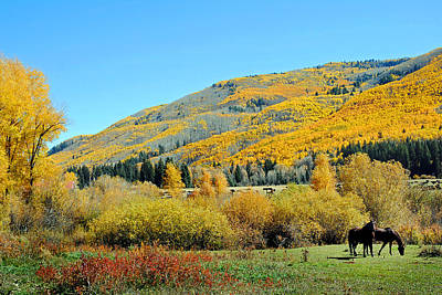 Photograph - Dolores River Ranch Fall 11  by Jeff Brunton