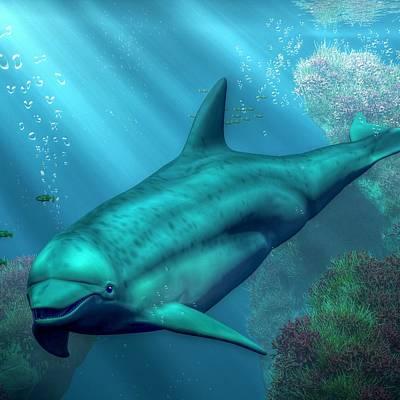 Dolphins Digital Art - Dolphin by Daniel Eskridge