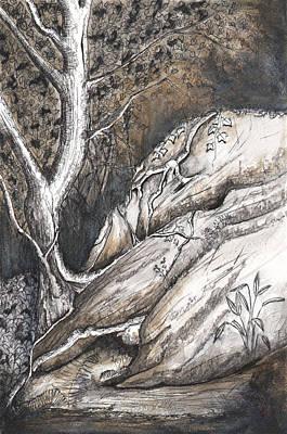 Dolphin Rocks Art Print