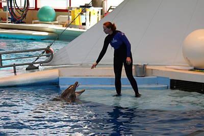 Dolphin Show - National Aquarium In Baltimore Md - 1212197 Art Print