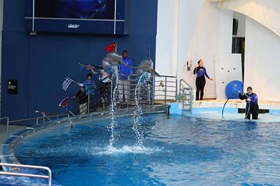 Dolphin Show - National Aquarium In Baltimore Md - 121289 Art Print