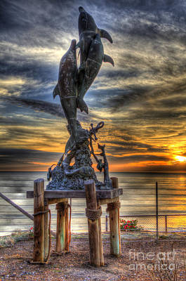 Photograph - Dolphin Sunset by Mathias