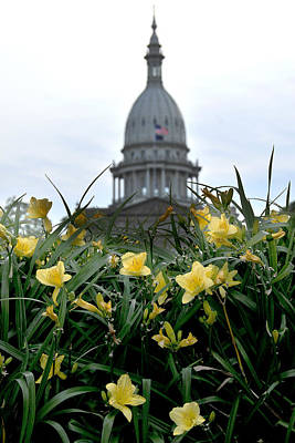Dome Through The Daffodils Art Print