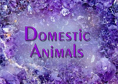 Mixed Media - Domestic Animals by Donna Proctor