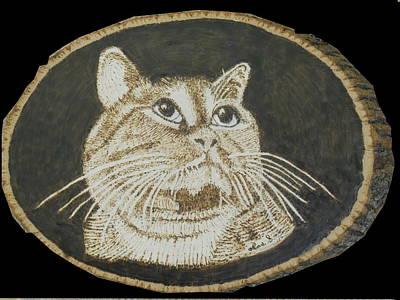 Domestic Cat Pet Portrait Original by H Leslie Simmons